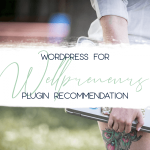 wordpress for wellpreneurs plugin mb spirit